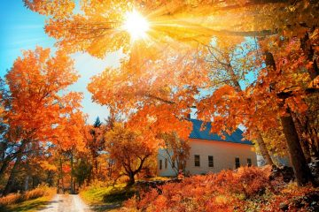 Traveling to See Fall Colors? Take a Ride on Amtrak's Great Dome Car