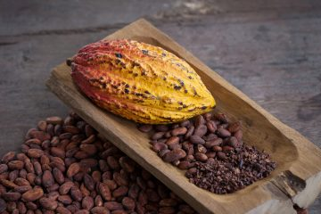 The Truth About Cocoa and Cacao
